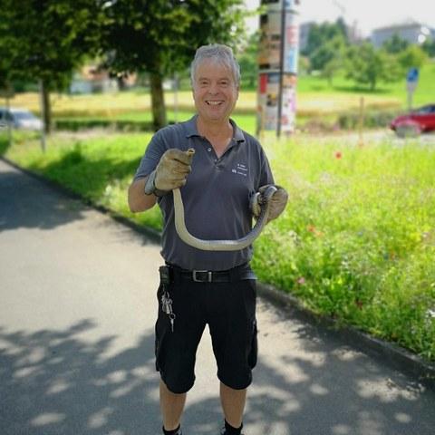 Hausdienst mit gefangener Schlange