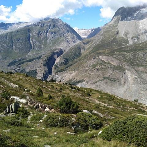 19_Alpenexkursion-4.jpg