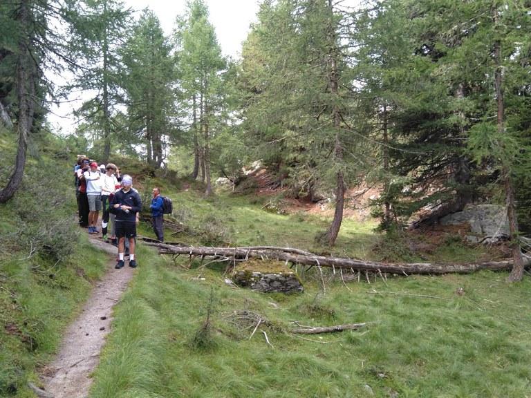 19_Alpenexkursion-9.jpg