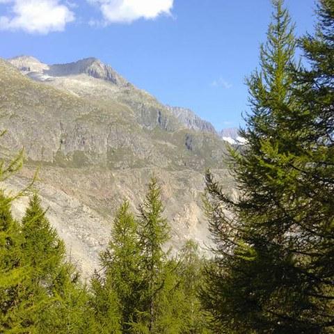 Alpenexkursion 2017