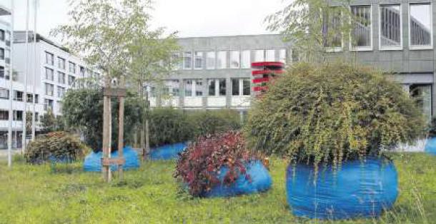 Plastiksäcke oder Kunst? Die Installation heisst «willKür» und steht vor dem kantonalen Verwaltungsgebäude an der Aa.