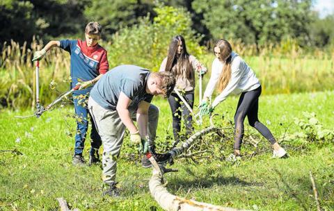Zwei Klassen der Kantonsschule Zug schützen in Zusammenarbeit mit dem WWF die Biodiversität.