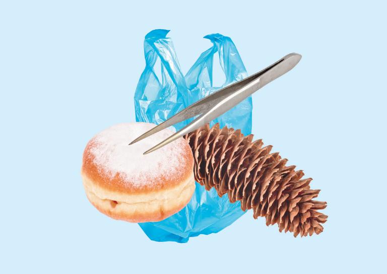 Helvetismen: Berliner, Pinzette, Tannzapfen, Plastiksäckli