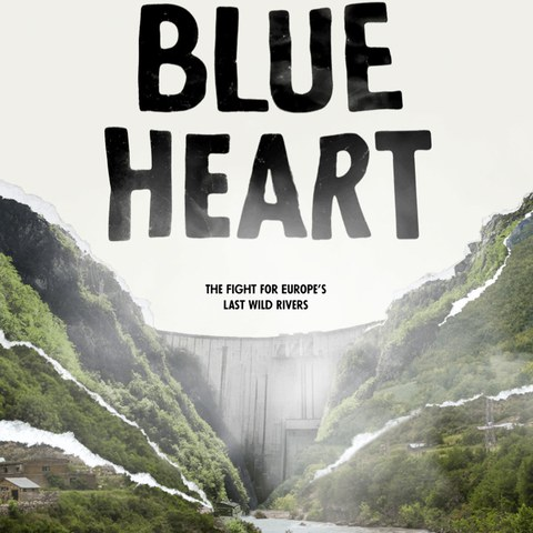 Blue Heart (Filmplakat)