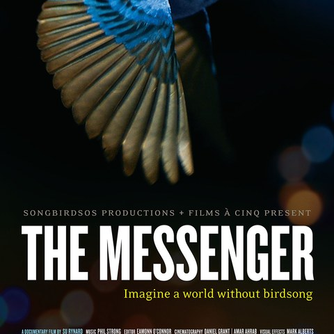 The Messenger (Filmplakat)