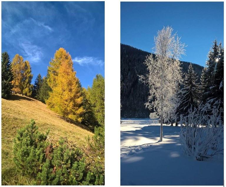 Herbst und Winter by Christine Hofer