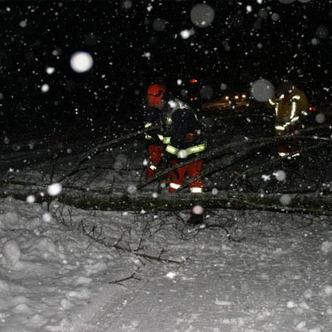 Schnee 5