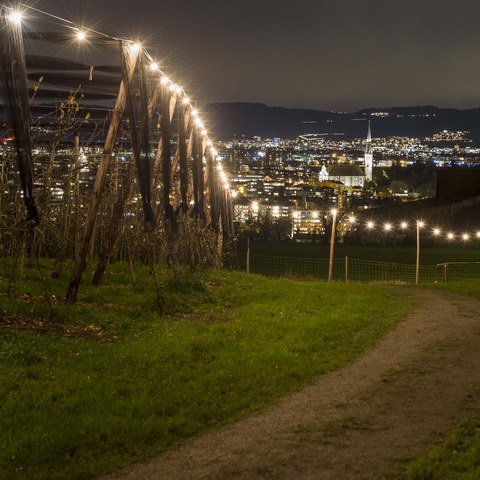 andreasbusslinger.ch, Lichterweg