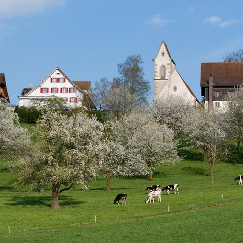 St. Wolfgang 1, Photo andreasbusslinger.ch