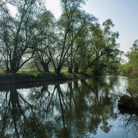 Naturschutzgebiet Reussspitz, Photo andreasbusslinger.ch