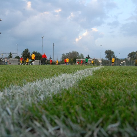 Fussballfeld Sportpark Rotkreuz
