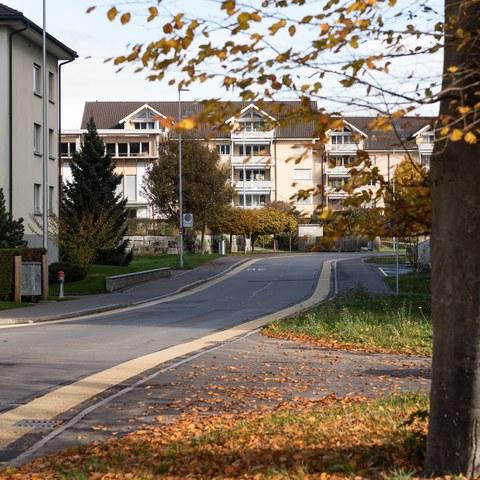 Birkenstrasse mit Quartier Sonnmatt