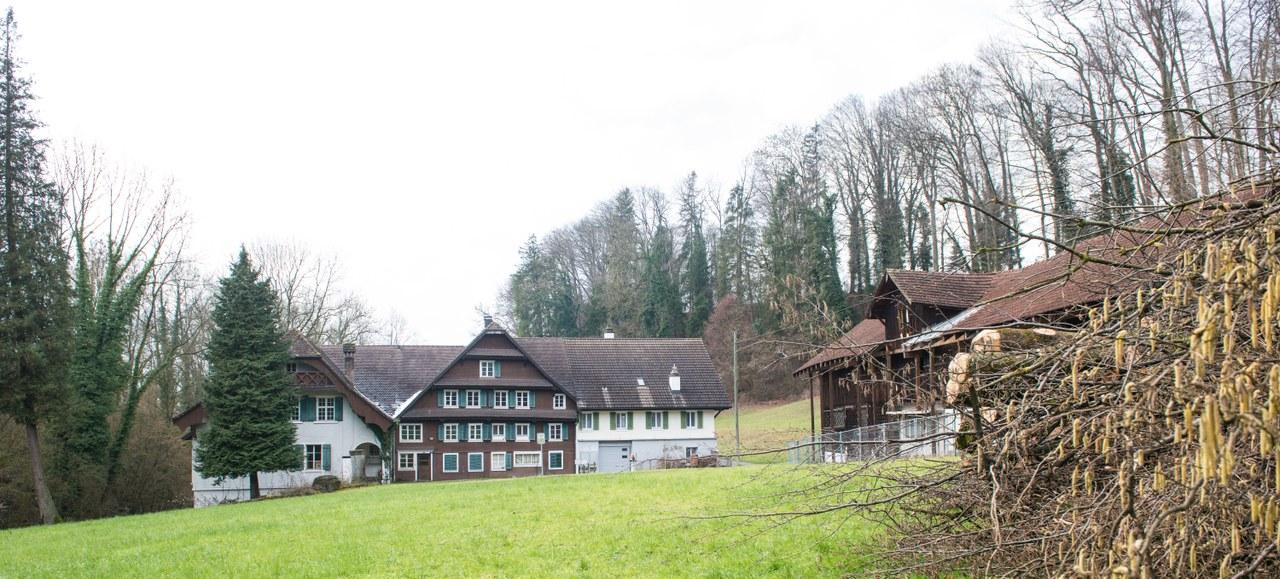 Binzmühle mit (von links nach rechts) Mühlegebäude, Haupthaus und rechts davon der Remise.
