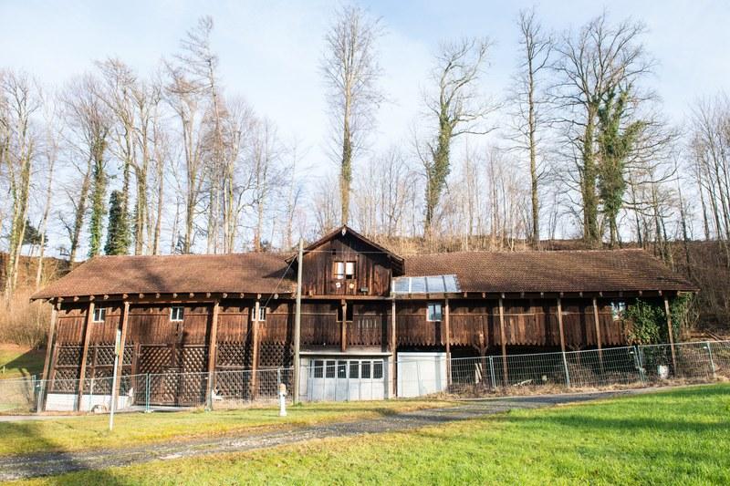 Die baufällige Remise mit den behelfsmässigen Stützen zur Sicherung des Daches.