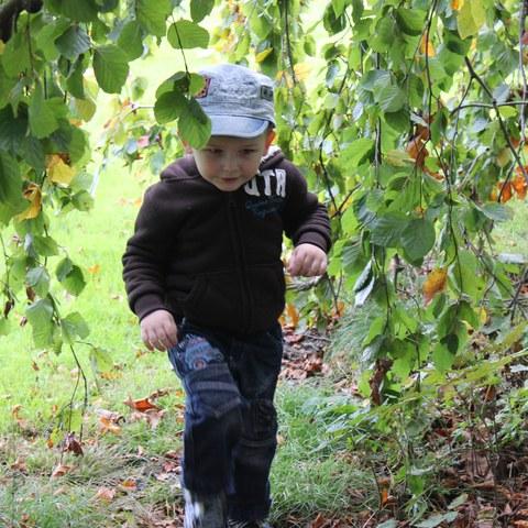 Spielen im Wald 2