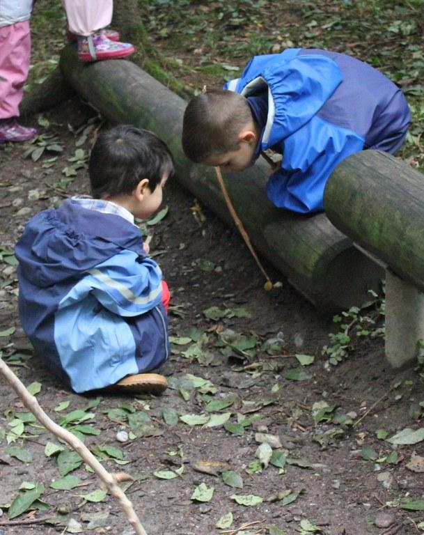 Spielen im Wald 4