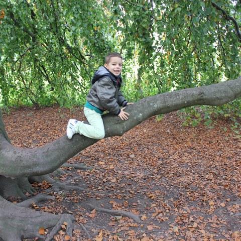 Spielen im Wald 5