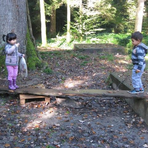 Balancieren im Wald.JPG