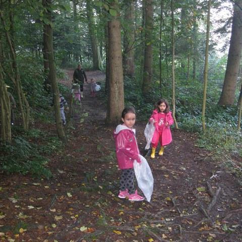 Sammeln im Wald.JPG