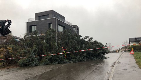 Sturmschäden im ganzen Gemeindegebiet