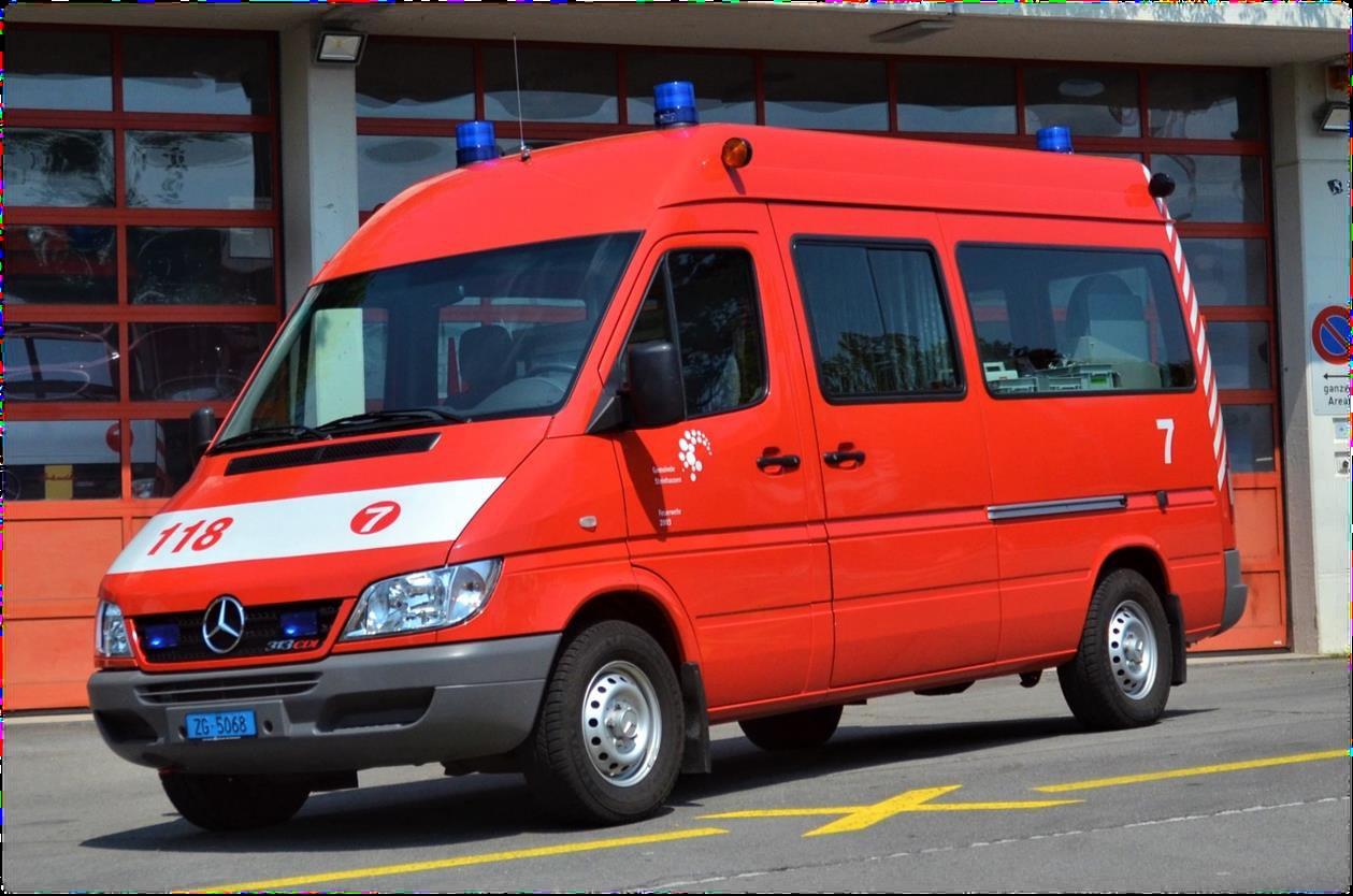 Verkehrsfahrzeug Steinbock 7