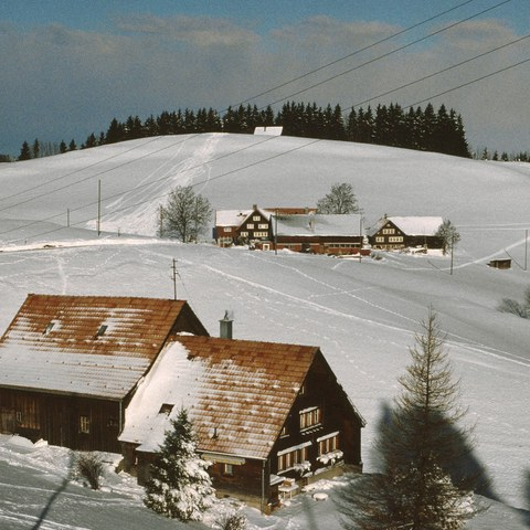 Bauernhof im Winter (AP)